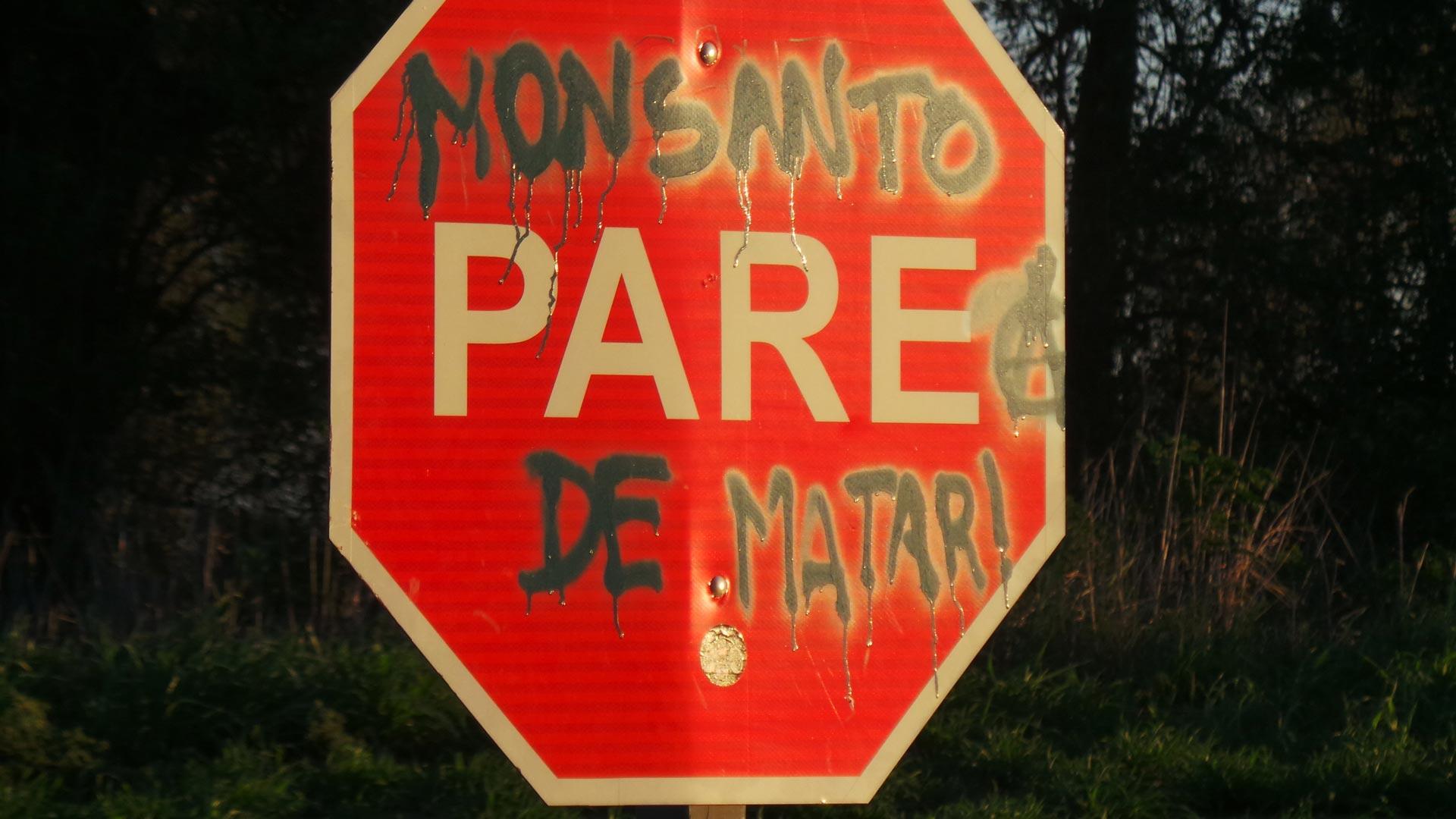 Monsanto_Barruti_07_CAJA
