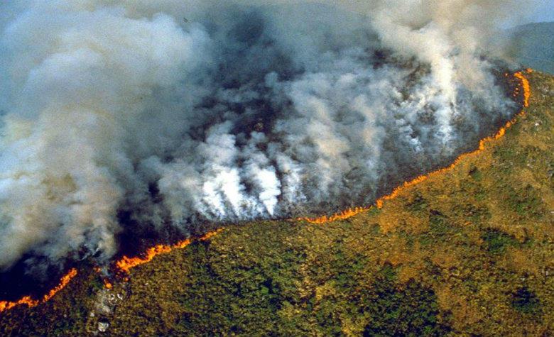 amazonas-incendios