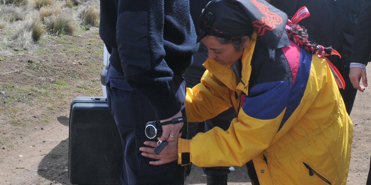 _Mapuche_Moira_05_caja