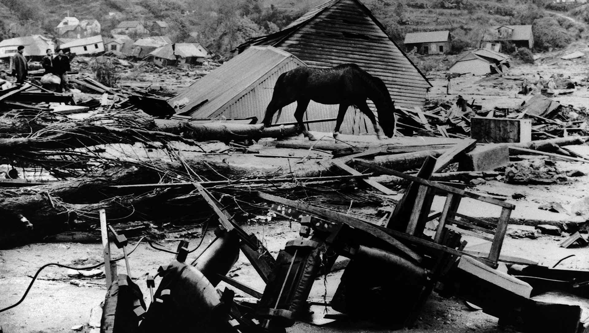 terremotos_historicos_04_caja