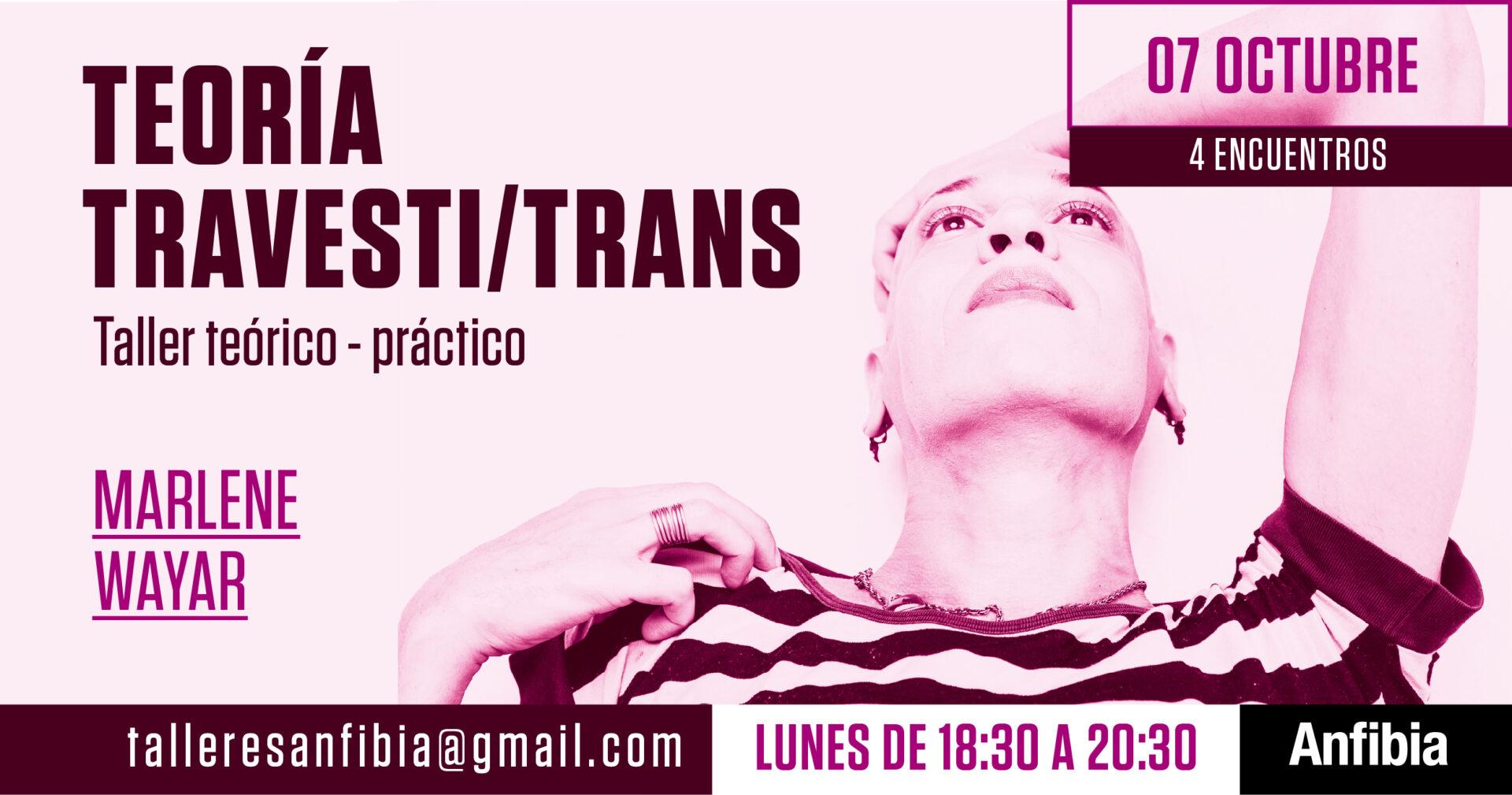 Teoría travesti-trans-02