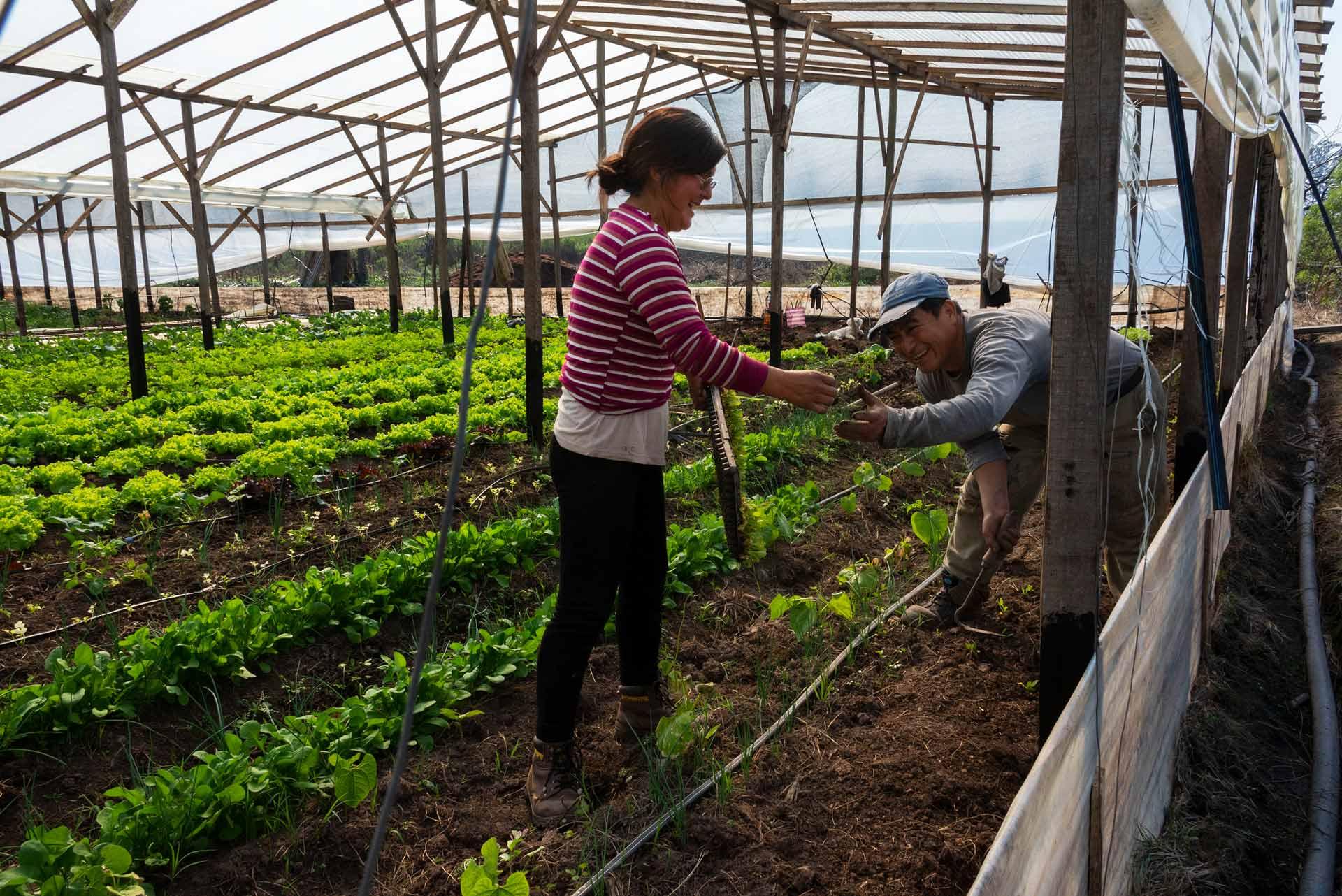 Agroecología_08