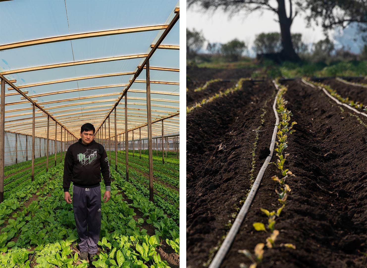 Agroecología_09
