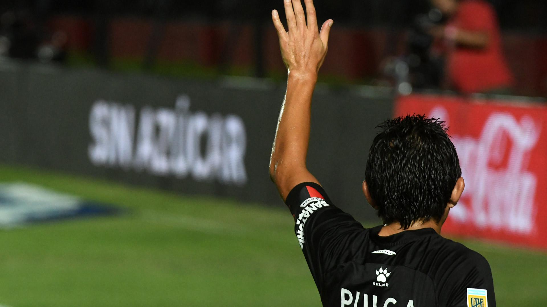 Pulga-Rodríguez_01Port2